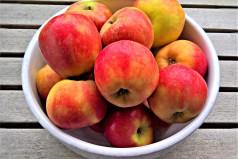 German Apples Day
