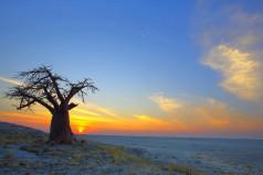 Botswana Teachers Day