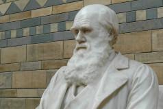 International Darwin Day