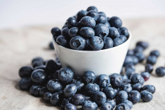 National Blueberry Day