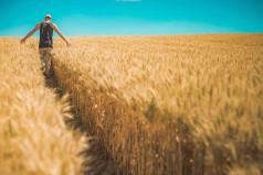 Whole Grains Month