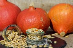 National Pumpkin Seed Day