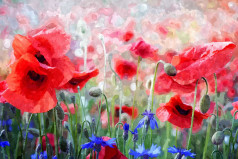 The Day of Remembrance of the Victims of World War I