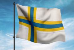 Sweden Finns Day
