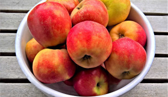 Read more about German Apples Day