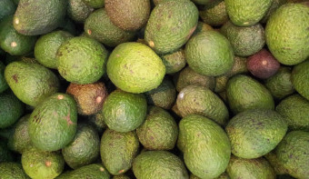 Read more about National Guacamole Day