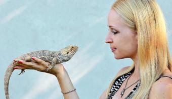 National Reptile Awareness Day