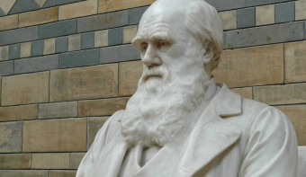 Read more about International Darwin Day