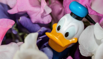 Read more about National Donald Duck Day