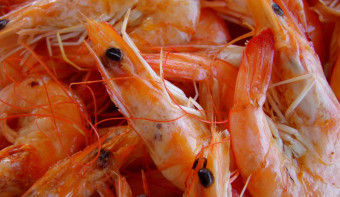 Read more about National Shrimp Day