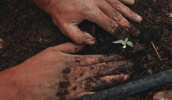 Read more about National Gardening Exercise Day