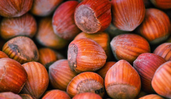 Read more about National Nut Day