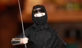 Read more about International Ninja DayPhoto