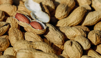 Read more about National Peanut Day