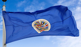 Read more about National Pan American Day