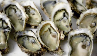 Read more about National Oyster Day