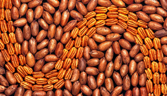 Read more about National Pecan Day