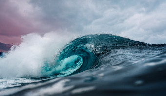 Read more about National Oceans Month