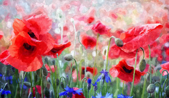 Read more about The Day of Remembrance of the Victims of World War I