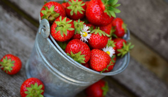 Read more about National Pick Strawberries Day