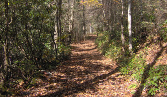 Read more about National Trails Day