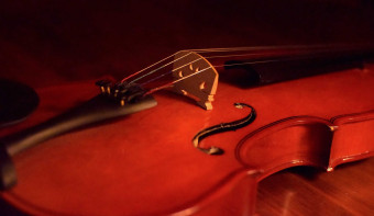 Read more about National Violin Day