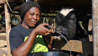Read more about International Day of Rural Women