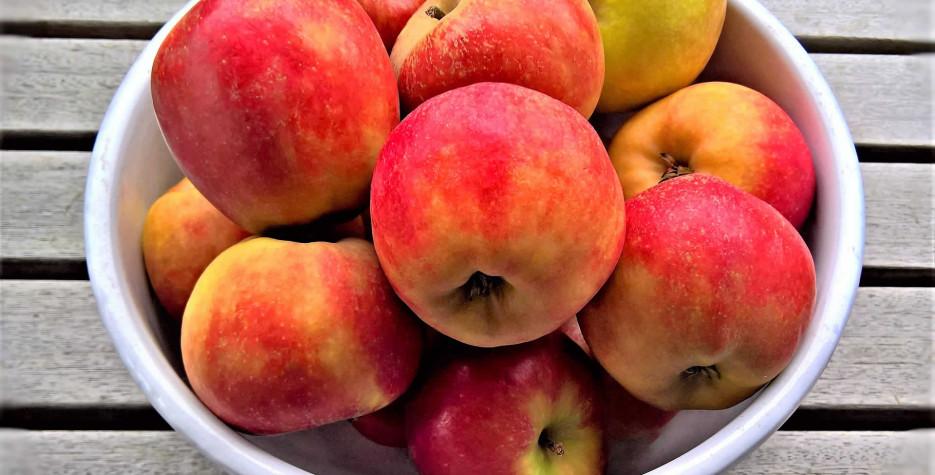 German Apples Day in Germany in 2022