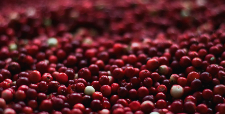 National Eat a Cranberry Day around the world in 2021