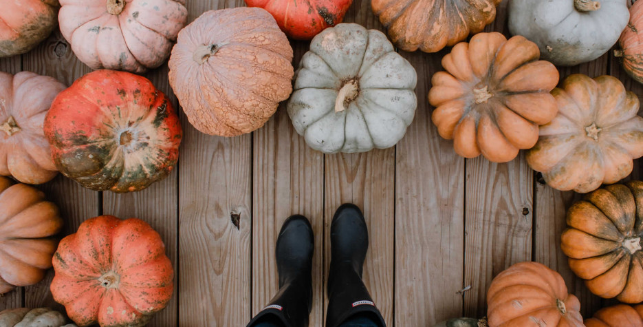 National Pumpkin Day in USA in 2021