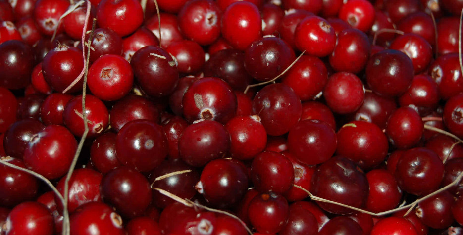 National Cranberry Relish Day in USA in 2021