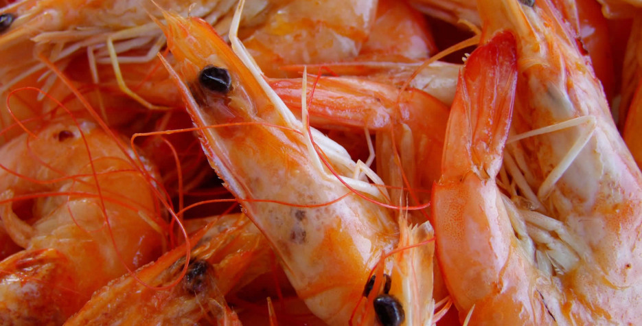 National Shrimp Day in USA in 2022