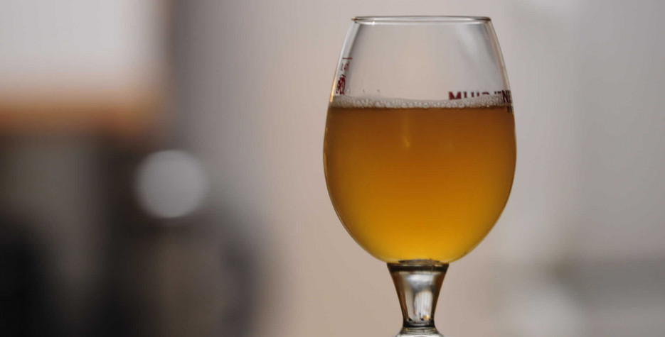 National Homebrew Day in USA in 2022