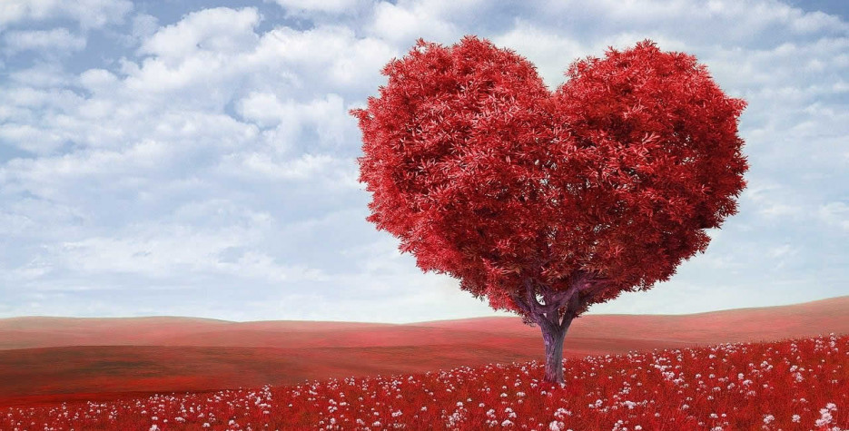 National Love a Tree Day around the world in 2021