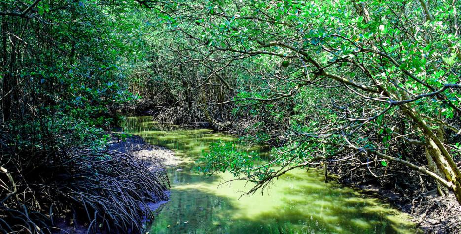 World Wetlands Day around the world in 2022