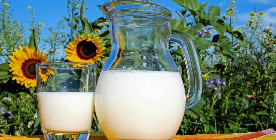 National Milk Day in India in 2021