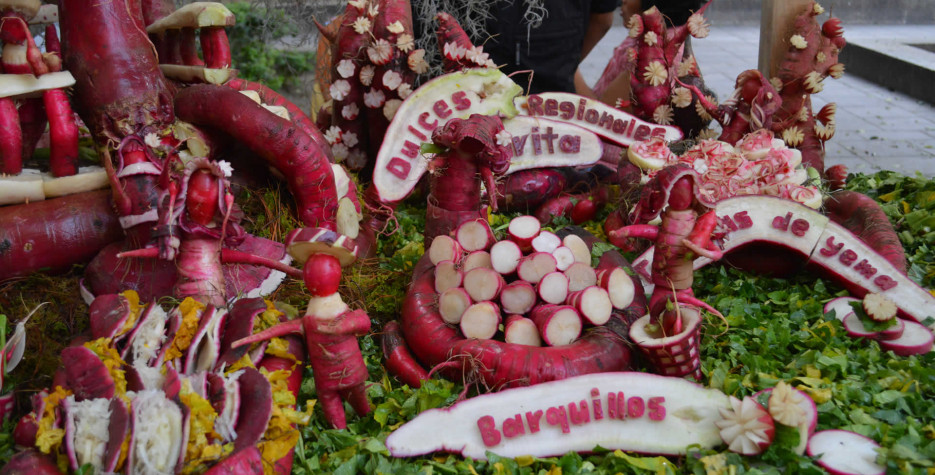 Find out the dates, history and traditions of the Night of the Radishes.