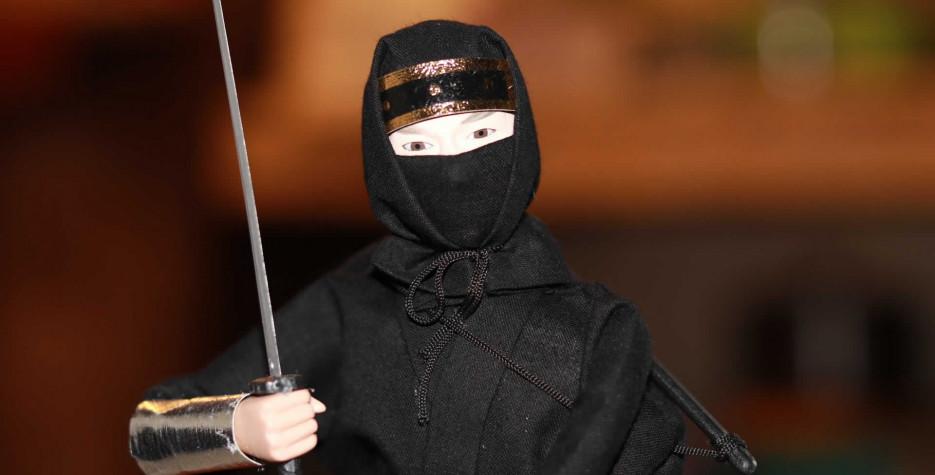 International Ninja DayPhoto in USA in 2021
