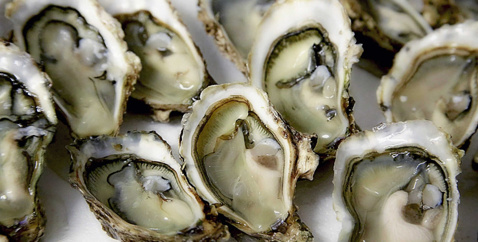 National Oyster Day in USA in 2022
