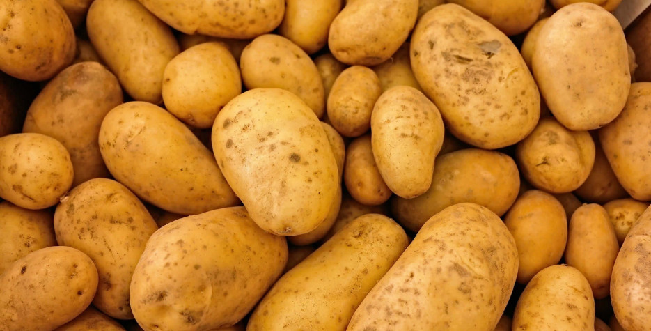 National Tater Day in USA in 2022