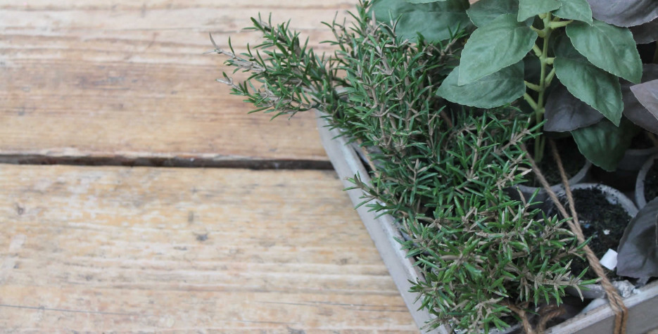 More Herbs, Less Salt Day around the world in 2021