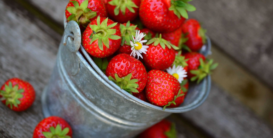 National Pick Strawberries Day in USA in 2022