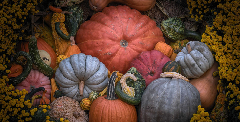 National Pumpkin Day in United Kingdom in 2021
