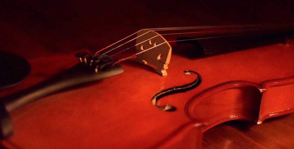 National Violin Day in USA in 2021